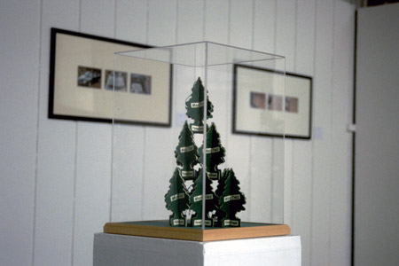 Magic tree, 2005